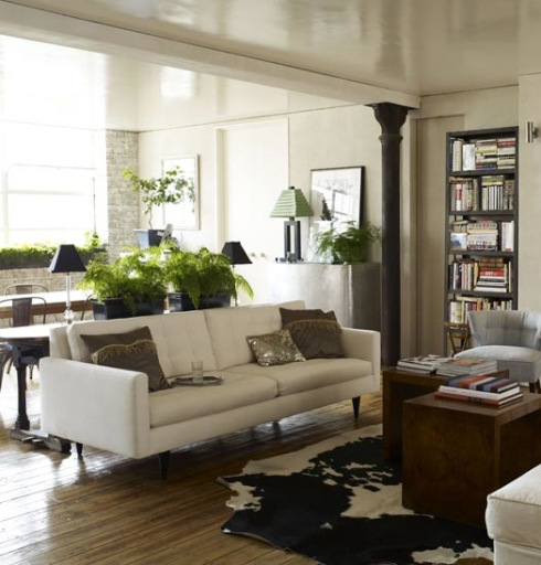 neutral furniture living room with plant