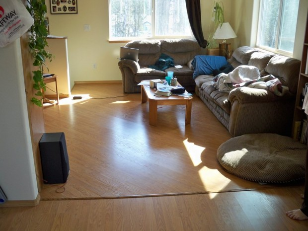beautiful living room with laminating floor