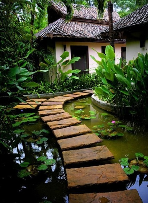 beatiful garden with tropical landscape