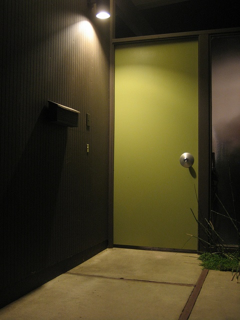 classic green and black front door color