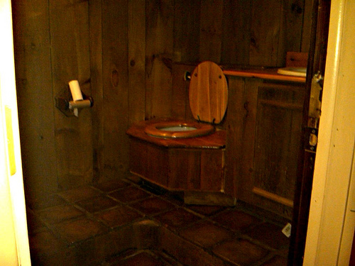 wooden bathroom interior